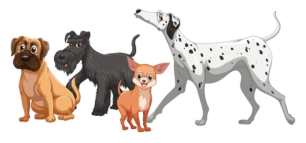 分離されたかわいい動物犬グループ
