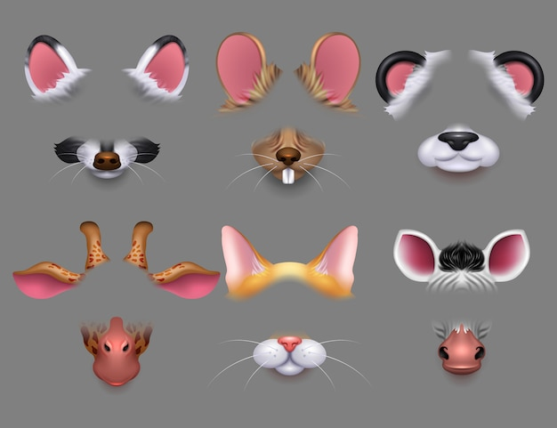 Cute animal ears and nose video effect filters. funny animals faces masks for mobile phone  set
