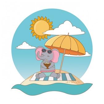Cute animal enjoying summer vacations