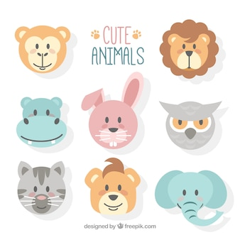 Cute animal faces with flat design