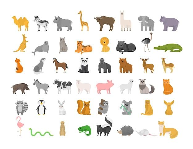 ファームと野生のキャラクターが設定されたかわいい動物。猫とライオン、象と猿。動物園のコレクション。分離フラットベクトルイラスト