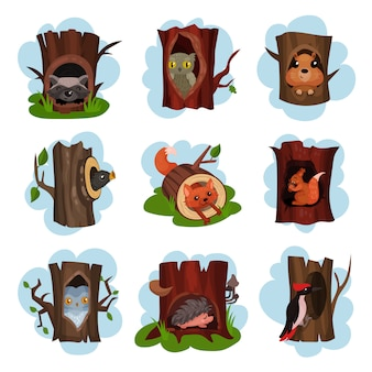 Cute animals and birds sitting in hollow of trees set, hollowed out old trees with fox, owl, hedgehog, raccoon, woodpecker, squirrel animals inside cartoon  illustrations