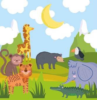 Cute animals drawing