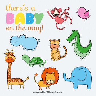 Cute animals for baby
