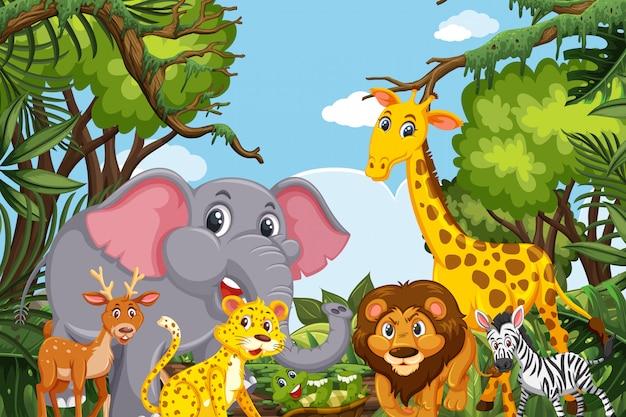 Cute animals in jungle scene