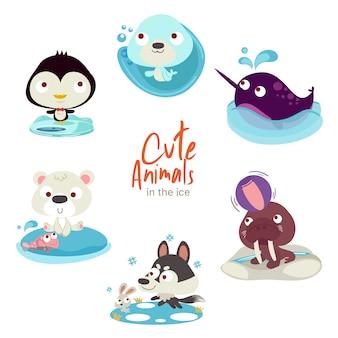 かわいい動物の氷 Premiumベクター
