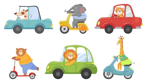 Милые животные на транспорте. животное на скутере, вождение автомобиля и зоопарк путешествия мультфильм векторные иллюстрации набор