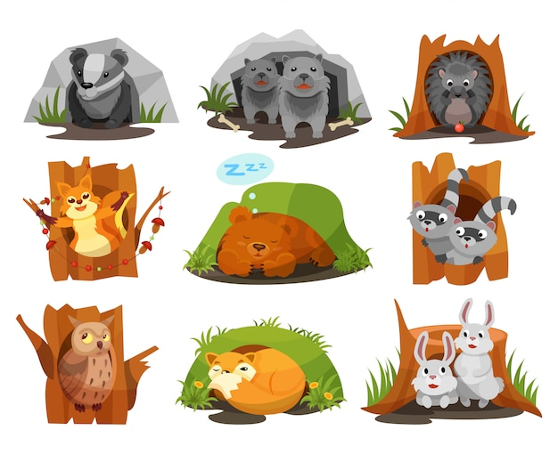 Cute animals sitting in burrows and hollows set, badger, wolves cubs, hedgehog, squirrel, bear cub, raccoon, owlet, fox, hares inside their homes  illustration