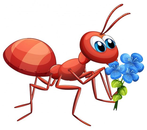 白い背景の青い花を保持しているかわいいアリの漫画のキャラクター
