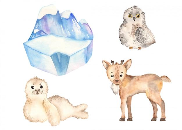 Симпатичные арктические животные олень, сова, тюлень в стиле акварели