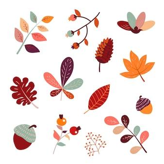 Симпатичные осенние ягоды, листья и растения сезонная осень черника, клен, дуб, плоская векторная иллюстрация