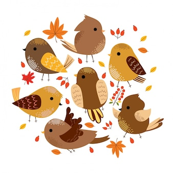 Cute autumn birds