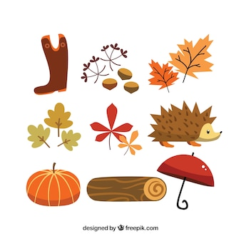 Cute autumn elements