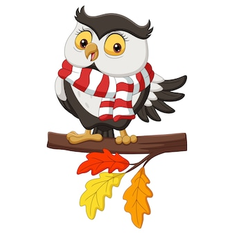 Cute autumn owl cartoon wearing a scarf on tree branches