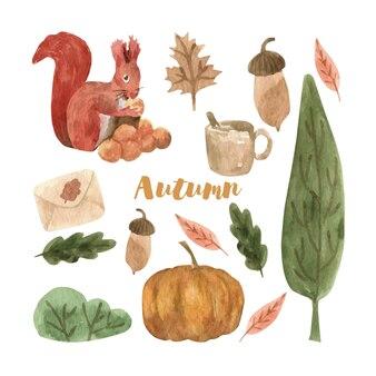 Cute autumn watercolor set with leaves mushrooms pumpkin and squirrel seasonal design