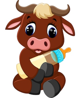 Cute baby bull holding milk bottle