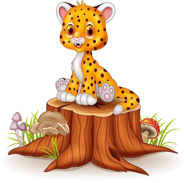 Cute baby cheetah sitting on tree stump