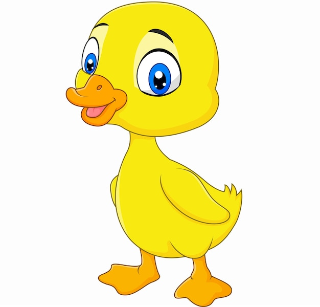 Cute baby duck posing isolated on white background