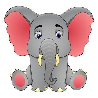 귀여운 아기 코끼리 앉아