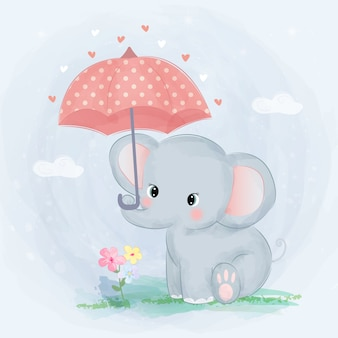 Cute baby elephant and umbrella