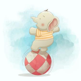 공을 가지고 노는 귀여운 아기 코끼리