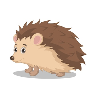 Cute baby hedgehog cartoon on white