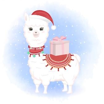 Cute baby llama and gift box