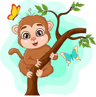 木の枝にかわいい赤ちゃん猿