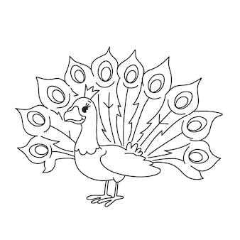 白い背景の上の着色のために分離されたかわいい赤ちゃん孔雀。子供のために鳥を着色するタスクを開発しています。面白い漫画のキャラクターの孔雀