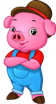 Cute baby pig cartoon on a white background