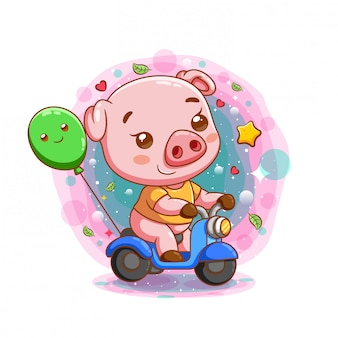 Cute baby pig riding motorcycle
