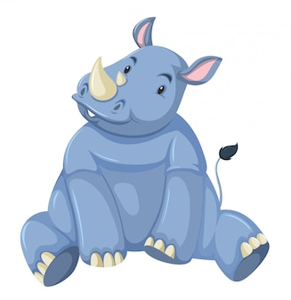 Cute baby rhino white background