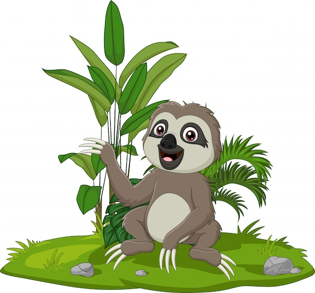 Cute baby sloth sitting on the grass