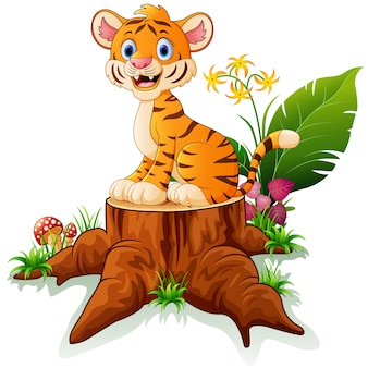 Cute baby tiger posing on tree stump