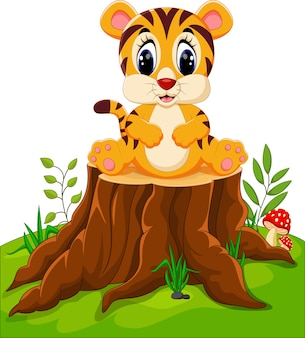 Cute baby tiger sitting on tree stump