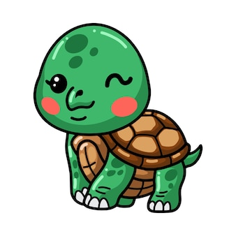 Cute baby turtle cartoon posing