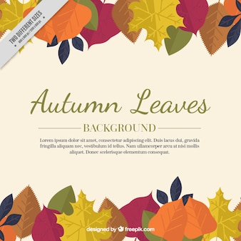 Cute background with fallen leaves in autumn
