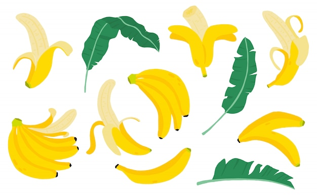 Cute banana fruit object collection. whole, cut in half, sliced on pieces banana.