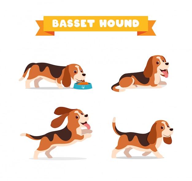 かわいいバセットハウンド犬の動物ペット、たくさんのポーズバンドルセット