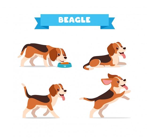 多くのポーズバンドルセットを持つかわいいビーグル犬動物ペット