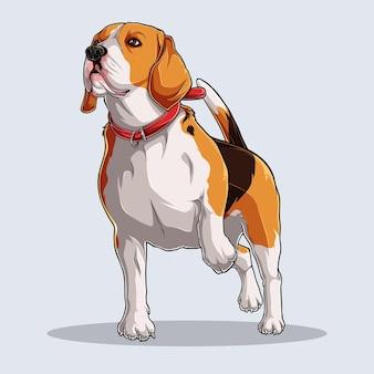 カラフルな影と白い背景で隔離の光で描かれたかわいいビーグル犬