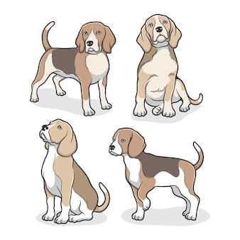 Cute beagle dog illustration