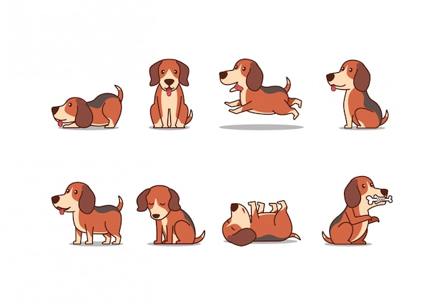 Cute beagle puppy dog illustration