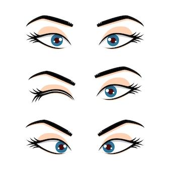 かわいい美しい女性の目と眉毛は、白い背景で隔離のセット