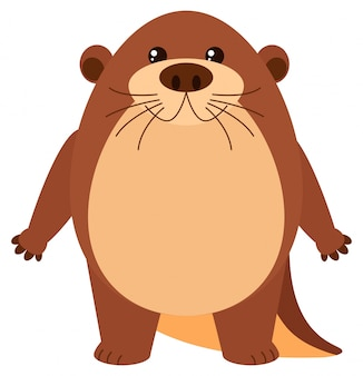 Cute beaver with round body