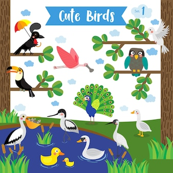 Cute bird animal cartoon