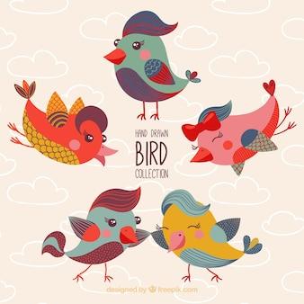 Collezione di uccelli carino