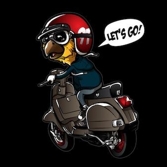 Cute bird riding scooter
