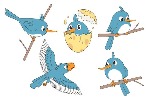 Of cute bird set. Premium Vector