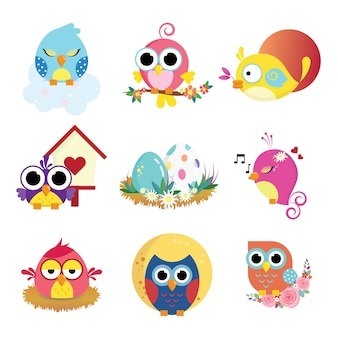 Cute birds pack